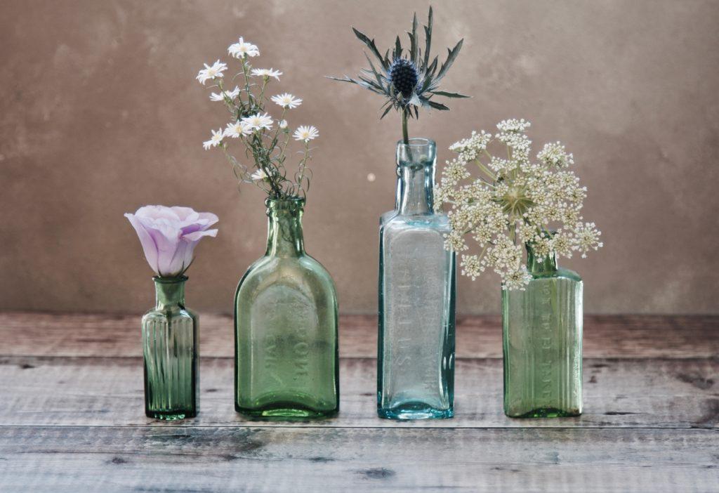 Plantas dentro de botellas. Representa la fitoterapia.