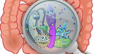 Los patógenos intestinales